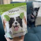 International plant-based dog food company introduces kindjerky in America