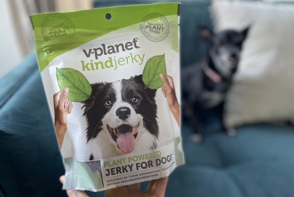 International plant-based dog food company introduces kindjerky in America