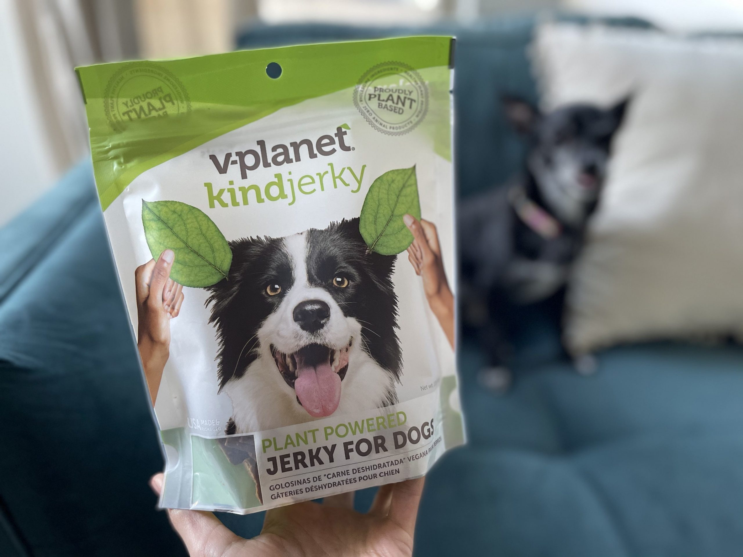 V-dog Launches New Meatless Jerky Treat for Dogs Worldwide